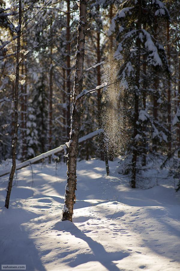 Myllykylä 1