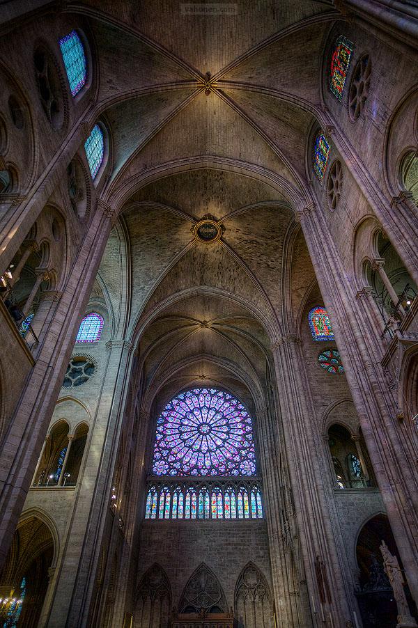 Paris Notre Dame 07